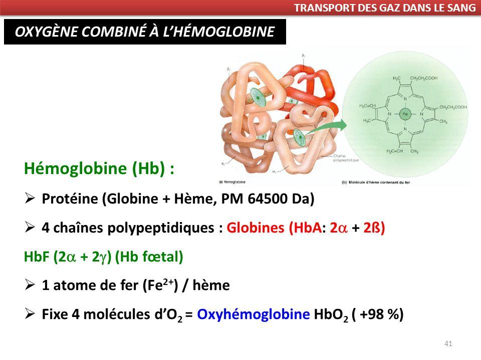 41 Hémoglobine (Hb) : Protéine (Globine + Hème, PM 64500 Da) 4 chaînes polypeptidiques : Globines (HbA: 2 + 2ß) HbF (2 + 2 ) (Hb fœtal) 1 atome de fer (Fe 2+ ) / hème Fixe 4 molécules dO 2 = Oxyhémoglobine HbO 2 ( +98 %) OXYGÈNE COMBINÉ À LHÉMOGLOBINE TRANSPORT DES GAZ DANS LE SANG
