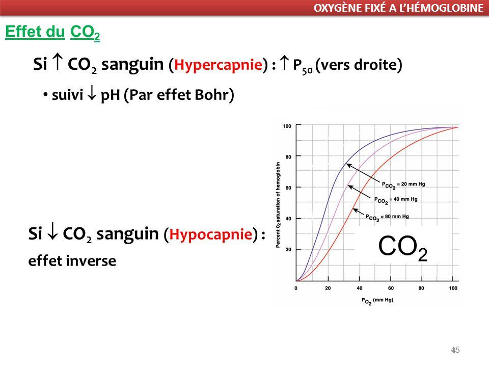45 Effet du CO 2 Si CO 2 sanguin (Hypercapnie) : P 50 (vers droite) suivi pH (Par effet Bohr) Si CO 2 sanguin (Hypocapnie) : effet inverse CO 2 OXYGÈNE FIXÉ A LHÉMOGLOBINE