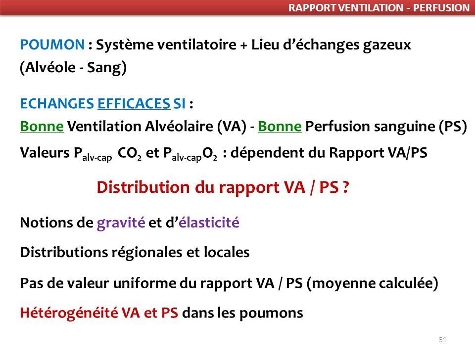 51 RAPPORT VENTILATION - PERFUSION POUMON : Système ventilatoire + Lieu déchanges gazeux (Alvéole - Sang) ECHANGES EFFICACES SI : Bonne Ventilation Alvéolaire (VA) - Bonne Perfusion sanguine (PS) Valeurs P alv-cap CO 2 et P alv-cap O 2 : dépendent du Rapport VA/PS Distribution du rapport VA / PS .