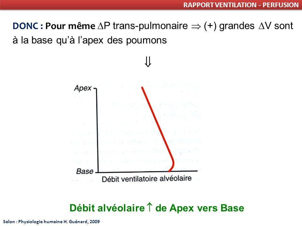 RAPPORT VENTILATION - PERFUSION DONC : Pour même P trans-pulmonaire (+) grandes V sont à la base quà lapex des poumons Débit alvéolaire de Apex vers Base Selon : Physiologie humaine H.