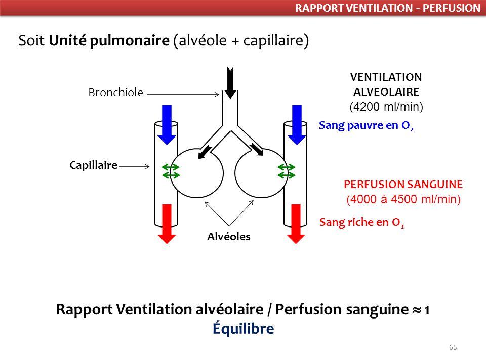 65 Bronchiole Capillaire Alvéoles Rapport Ventilation alvéolaire / Perfusion sanguine 1 Équilibre Sang riche en O 2 PERFUSION SANGUINE (4000 à 4500 ml/min) Sang pauvre en O 2 VENTILATION ALVEOLAIRE (4200 ml/min) Soit Unité pulmonaire (alvéole + capillaire) RAPPORT VENTILATION - PERFUSION