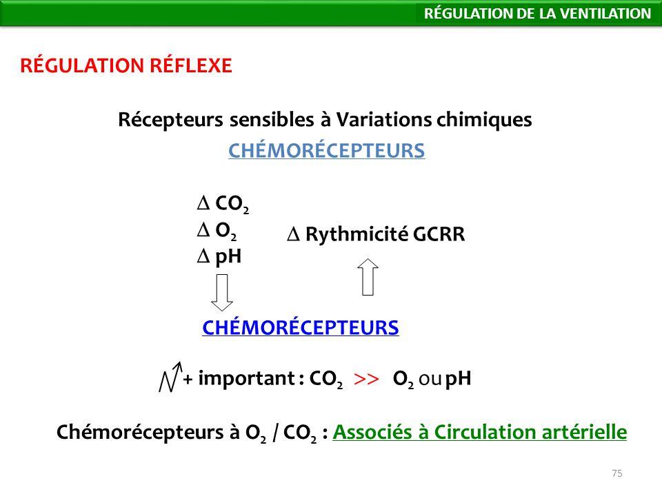 75 CHÉMORÉCEPTEURS RÉGULATION RÉFLEXE Récepteurs sensibles à Variations chimiques CO 2 O 2 pH CHÉMORÉCEPTEURS + important : CO 2 O 2 ou pH Chémorécepteurs à O 2 / CO 2 : Associés à Circulation artérielle Régulation de la Ventilation Rythmicité GCRR RÉGULATION DE LA VENTILATION