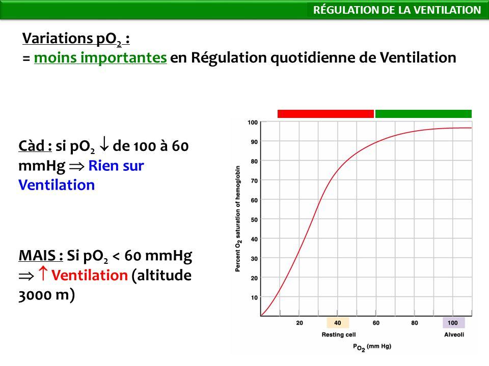 79 Variations pO 2 : = moins importantes en Régulation quotidienne de Ventilation Càd : si pO 2 de 100 à 60 mmHg Rien sur Ventilation Régulation de la Ventilation MAIS : Si pO 2 < 60 mmHg Ventilation (altitude 3000 m) RÉGULATION DE LA VENTILATION