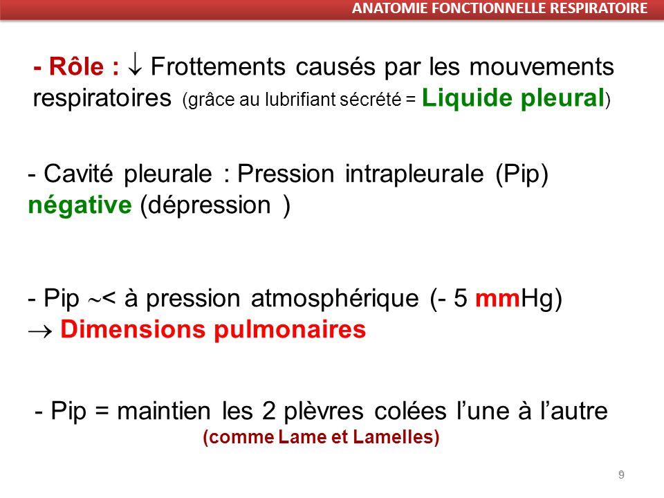 9 9 - Pip < à pression atmosphérique (- 5 mmHg) Dimensions pulmonaires - Rôle : Frottements causés par les mouvements respiratoires (grâce au lubrifiant sécrété = Liquide pleural ) - Cavité pleurale : Pression intrapleurale (Pip) négative (dépression ) - Pip = maintien les 2 plèvres colées lune à lautre (comme Lame et Lamelles)