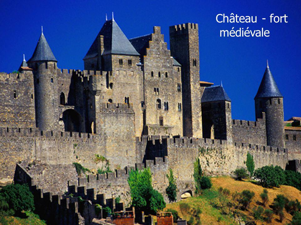 Château - fort médiévale