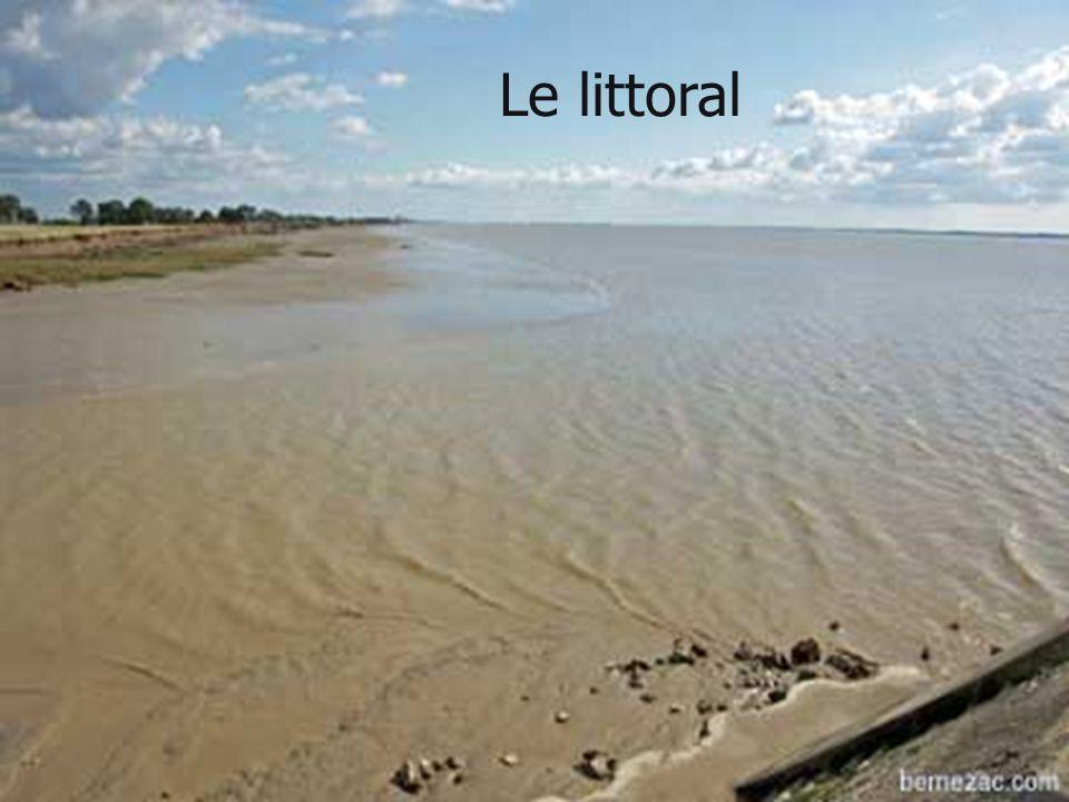 Le littoral