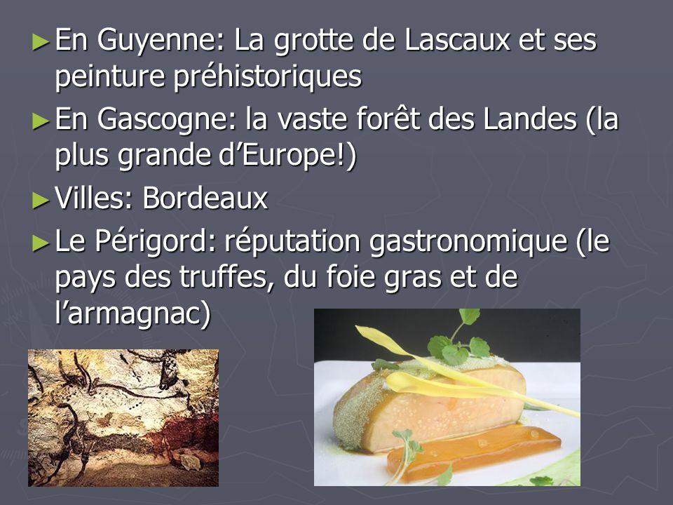 En Guyenne: La grotte de Lascaux et ses peinture préhistoriques En Guyenne: La grotte de Lascaux et ses peinture préhistoriques En Gascogne: la vaste