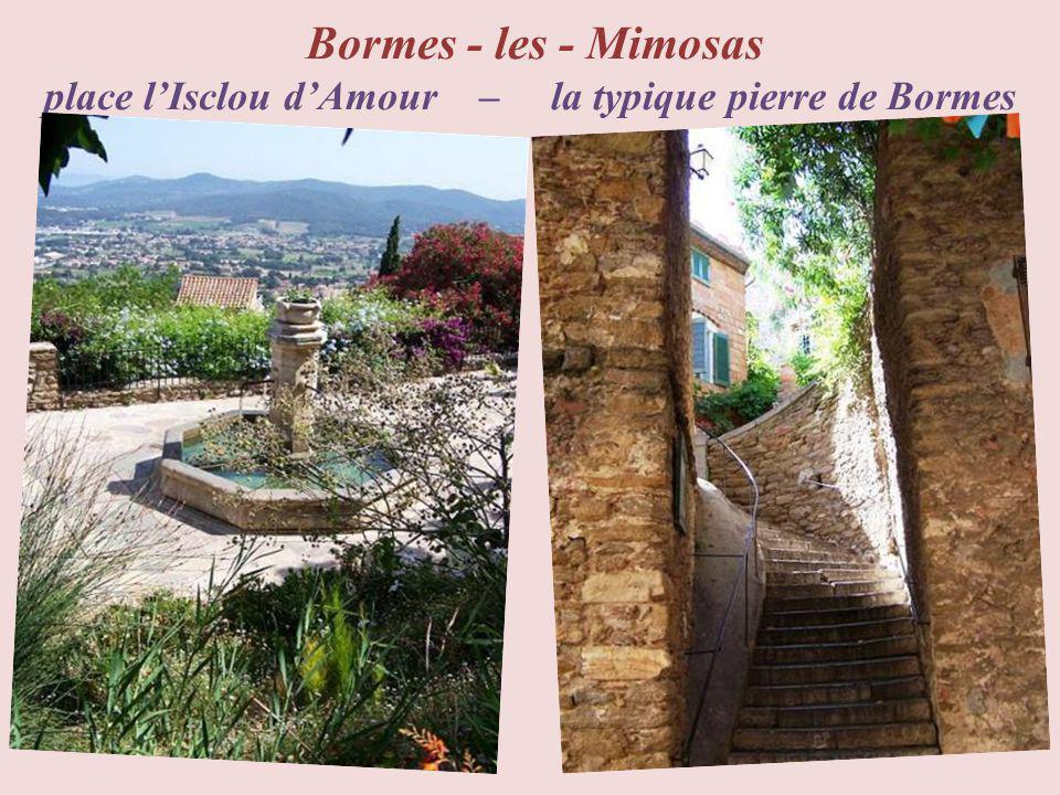 Hyères parc floral Olbius Riquier Hyères place centrale