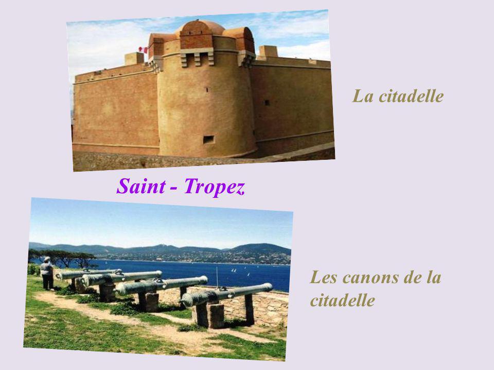 Saint-Tropez le port (Le jour)