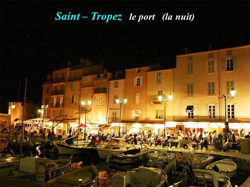 La citadelle Les canons de la citadelle Saint - Tropez