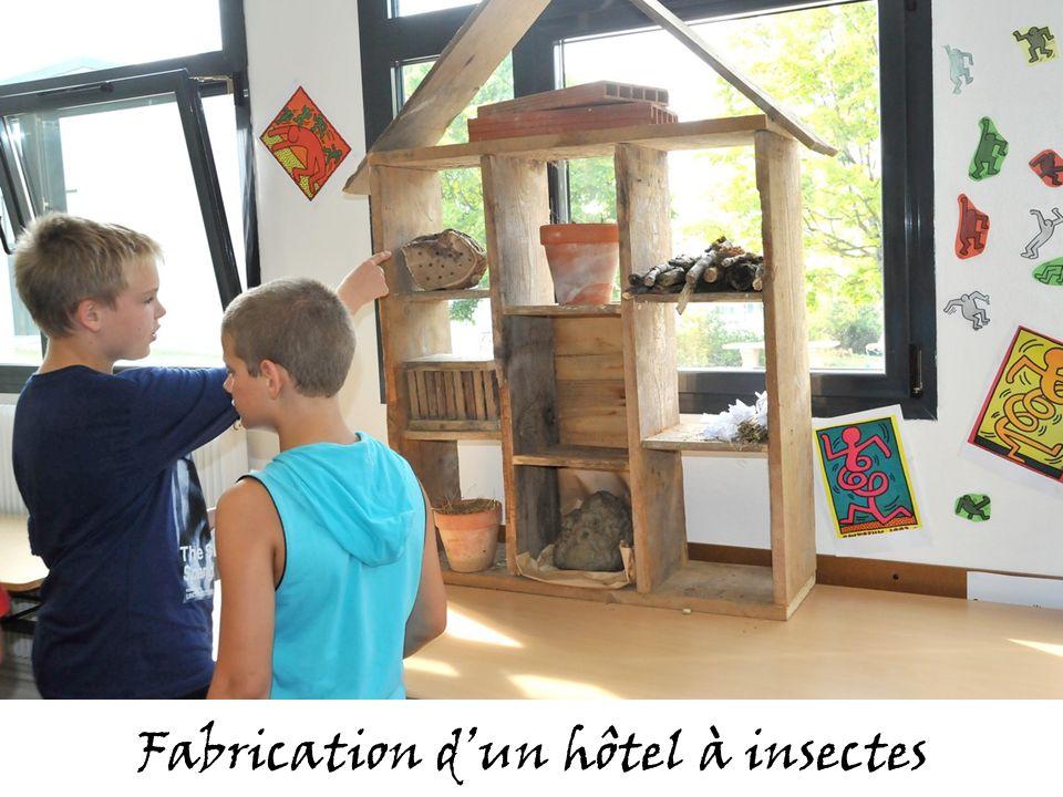 Fabrication dun hôtel à insectes