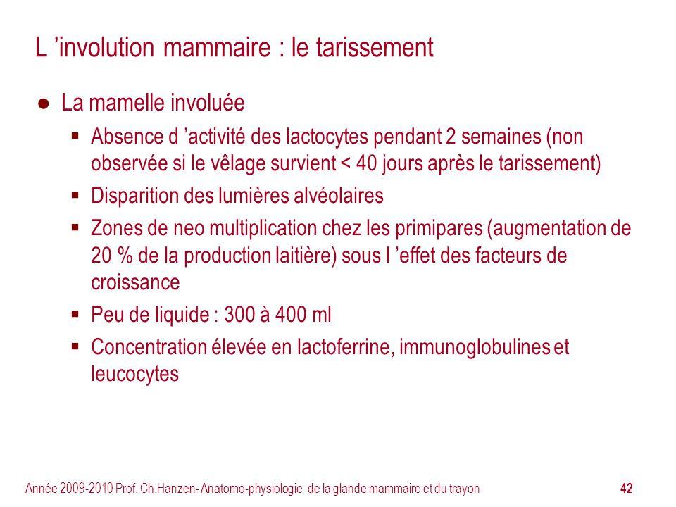 42 Année 2009-2010 Prof. Ch.Hanzen- Anatomo-physiologie de la glande mammaire et du trayon L involution mammaire : le tarissement La mamelle involuée