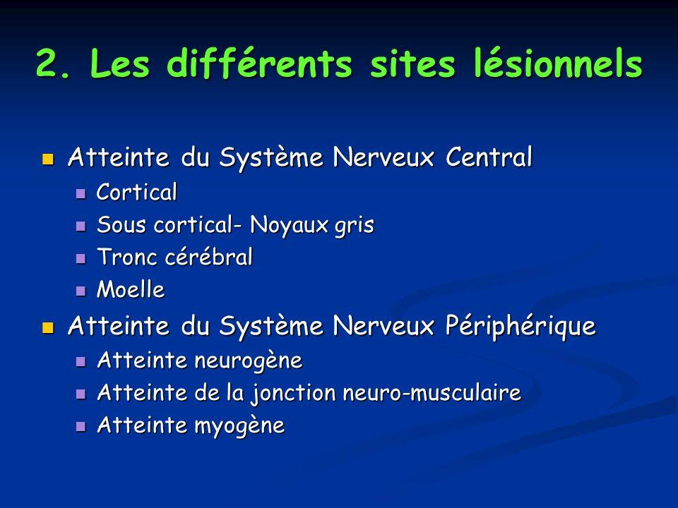 2. Les différents sites lésionnels Atteinte du Système Nerveux Central Atteinte du Système Nerveux Central Cortical Cortical Sous cortical- Noyaux gri