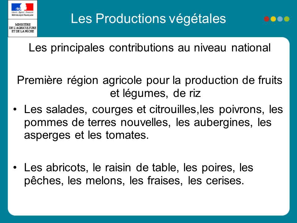 Les Productions végétales Les principales contributions au niveau national Première région agricole pour la production de fruits et légumes, de riz Les salades, courges et citrouilles,les poivrons, les pommes de terres nouvelles, les aubergines, les asperges et les tomates.