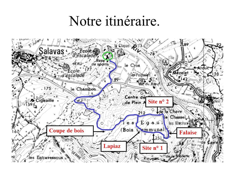 Notre itinéraire. Site n° 1 Site n° 2 Falaise Coupe de bois Lapiaz