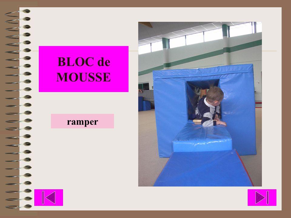 BLOC de MOUSSE ramper
