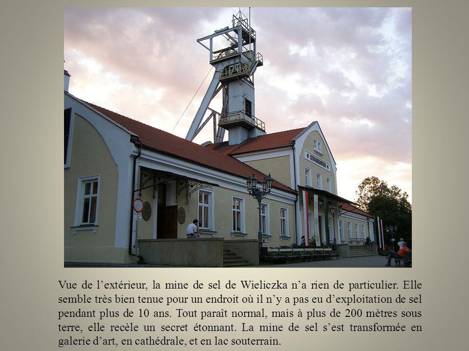 Les profondeurs du sol polonais recèlent un formidable trésor, très peu connu au delà des pays dEurope de lest. Pendant des siècles les mineurs ont ex
