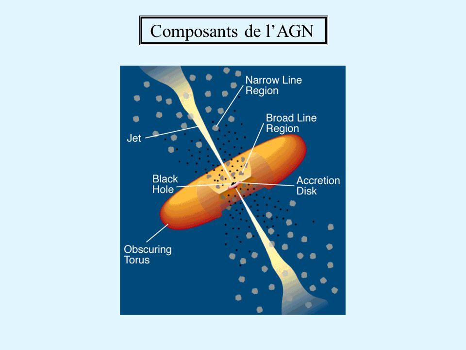 Composants de lAGN