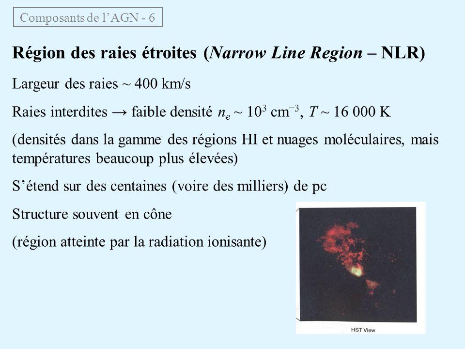 Composants de lAGN - 6 Région des raies étroites (Narrow Line Region – NLR) Largeur des raies ~ 400 km/s Raies interdites faible densité n e ~ 10 3 cm
