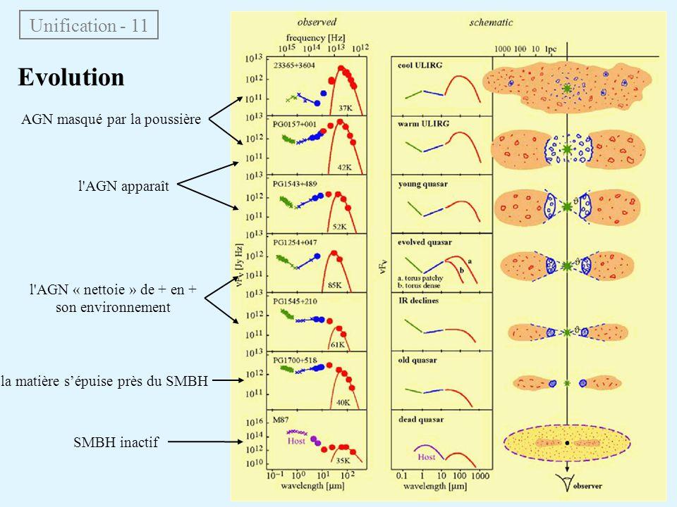 Unification - 11 Evolution AGN masqué par la poussière l'AGN apparaît l'AGN « nettoie » de + en + son environnement la matière sépuise près du SMBH SM