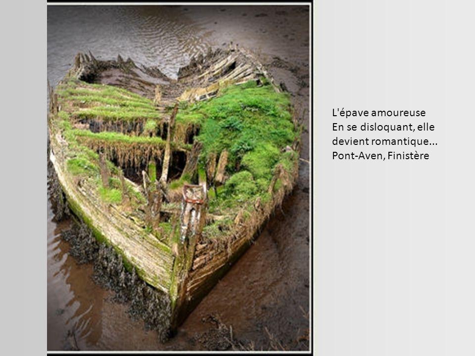 Le Danube Voyager s'est échoué sur la plage de la Franqui suite à une tempête sur la côte méditerranéenne française, en décembre 1999. La Franqui, Aud