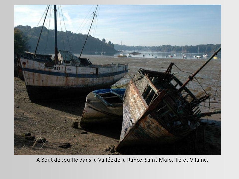 Vaisseau fantome - Quimper, Finistère.