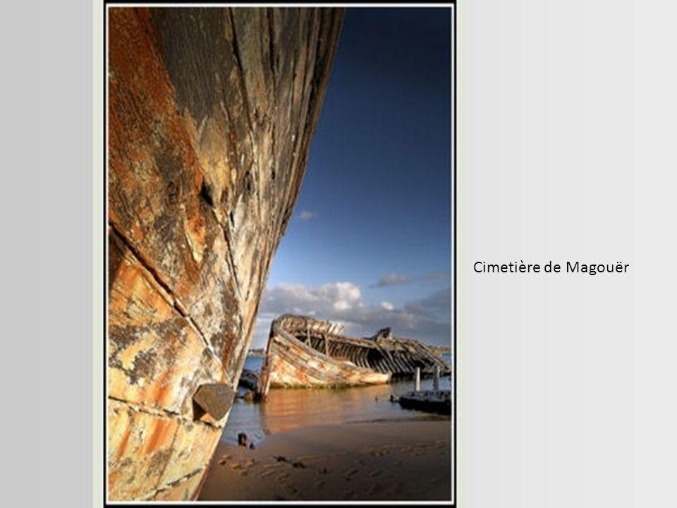 Cette barque abandonnée par les hommes a été conquise par la nature. Canal du Midi.