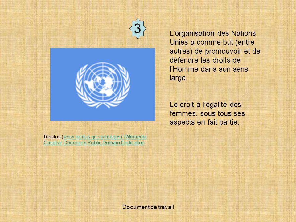 Document de travail 4 Récitus (www.recitus.qc.ca/images): Blau et Kahn, 2000, daprès des données non publiées de lOCDE et Service national du RÉCIT de l univers social.