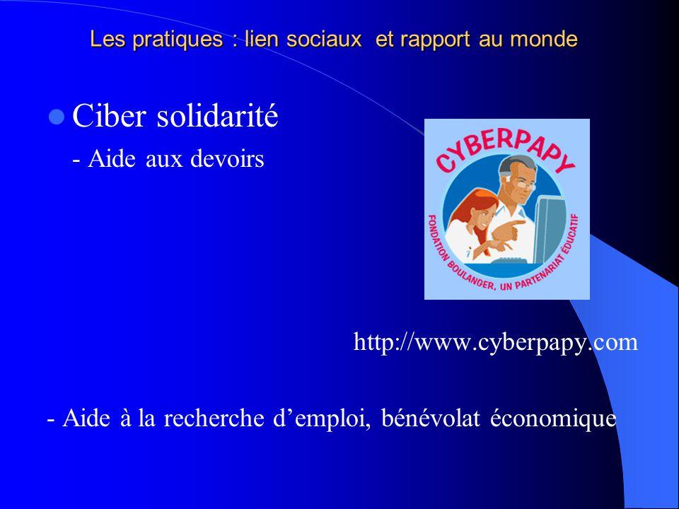 Les pratiques : lien sociaux et rapport au monde Ciber solidarité - Aide aux devoirs http://www.cyberpapy.com - Aide à la recherche demploi, bénévolat