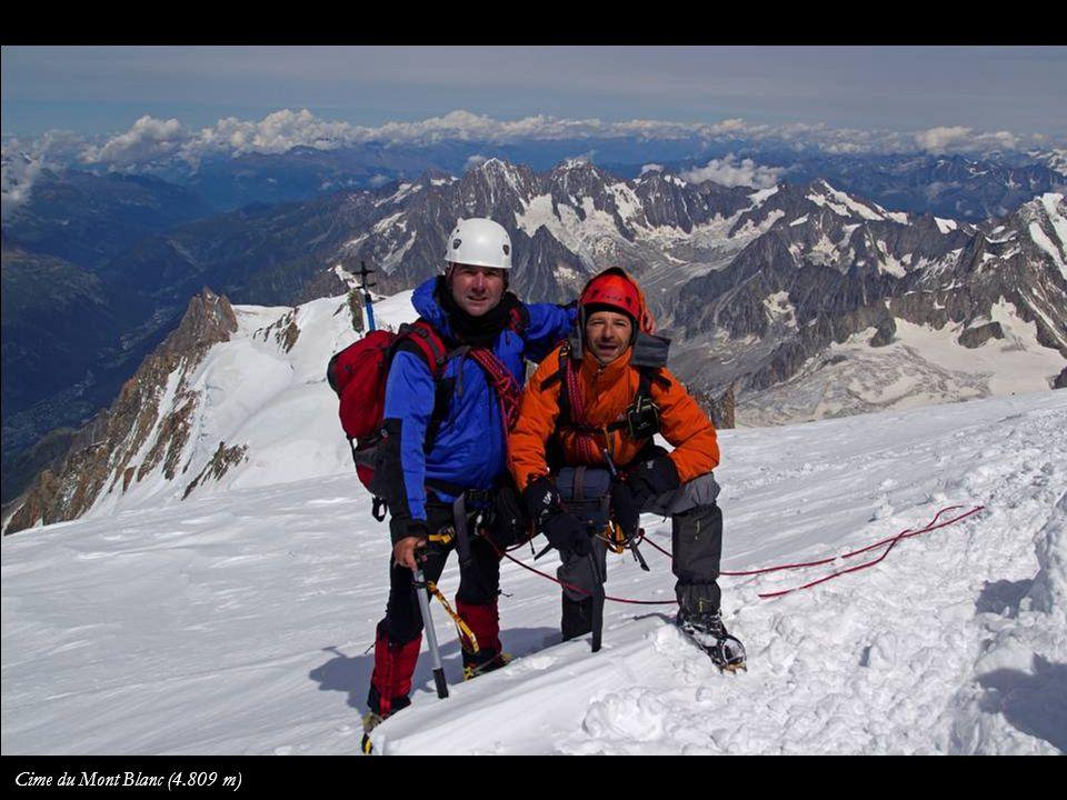 Panorama depuis la cime du Mont Blanc