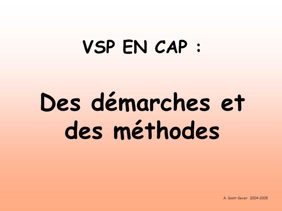 VSP EN CAP : Des démarches et des méthodes A. Saint-Sever 2004-2005