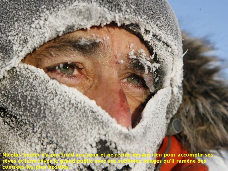 Nicolas Vanier c'est également L'Odyssée Blanche, une traversée de plus de 8 000 km de Skagway en Alsaka, jusqu'au Québec, les grandes courses de traî