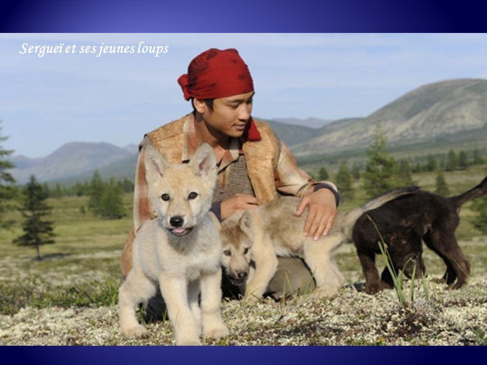 De ses rencontres avec les loups - pour lesquels il voue une véritable passion - et avec les derniers nomades éleveurs de rennes du Grand Nord, Nicola