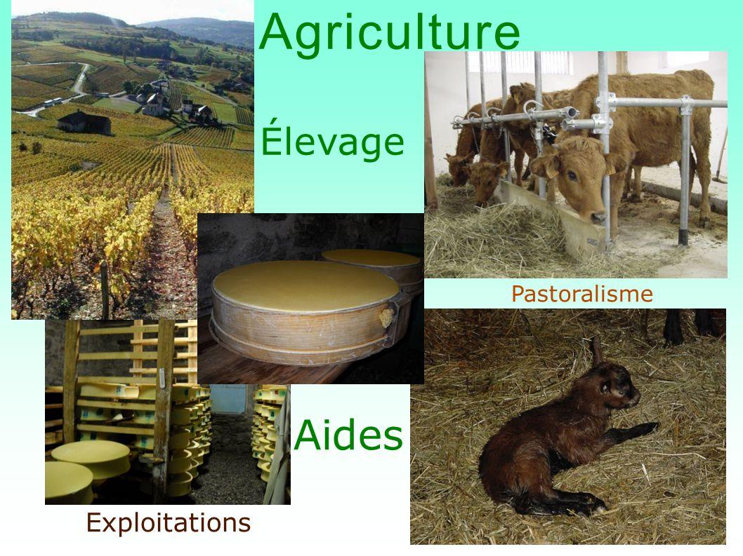 Agriculture Élevage Aides Exploitations Pastoralisme