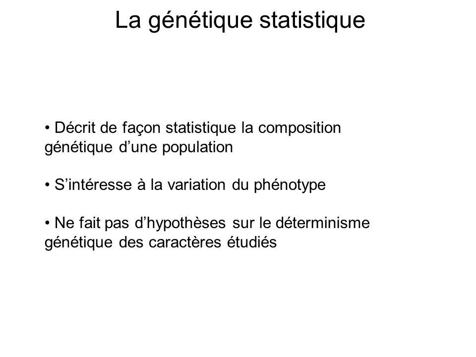 La génétique statistique Décrit de façon statistique la composition génétique dune population Sintéresse à la variation du phénotype Ne fait pas dhypo