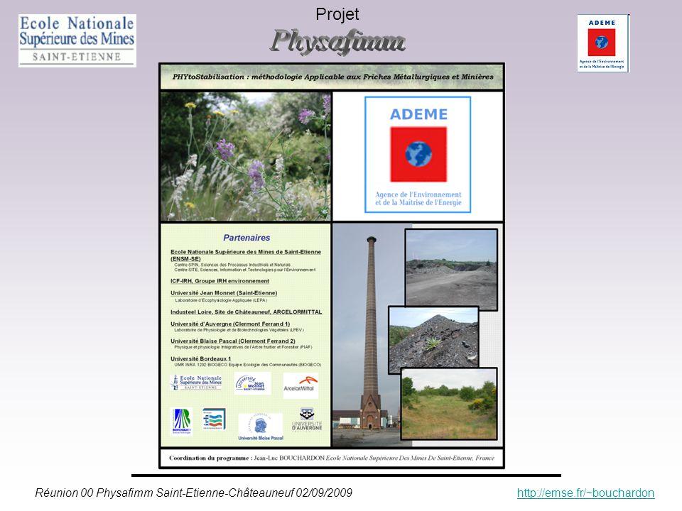 Réunion 00 Physafimm Saint-Etienne-Châteauneuf 02/09/2009 http://emse.fr/~bouchardonhttp://emse.fr/~bouchardon Projet