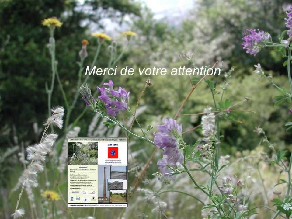 Réunion 00 Physafimm Saint-Etienne-Châteauneuf 02/09/2009 http://emse.fr/~bouchardonhttp://emse.fr/~bouchardon Merci de votre attention