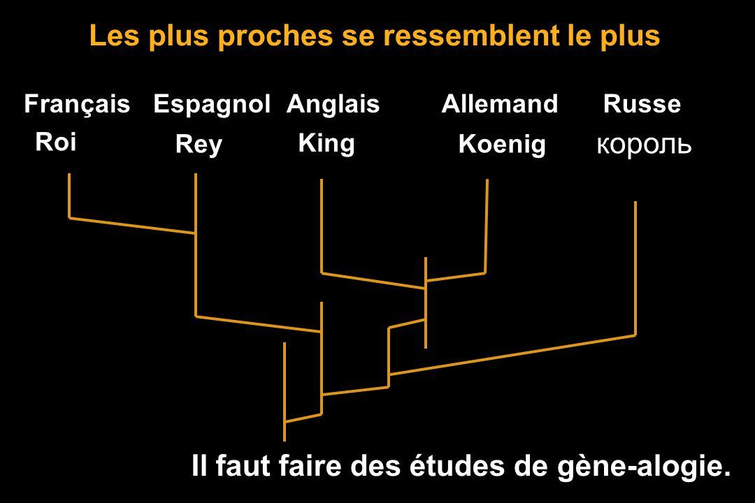 Frère, soeurCousins germains Cousins bretons Comment établir la parenté ? Les plus proches se ressemblent le plus