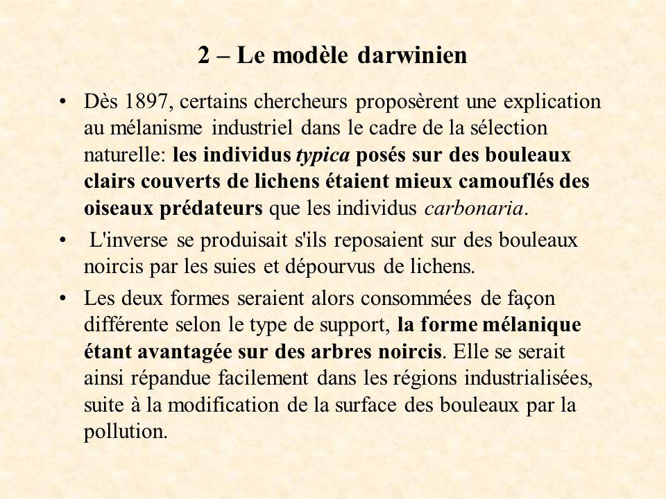 2 – Le modèle darwinien Dès 1897, certains chercheurs proposèrent une explication au mélanisme industriel dans le cadre de la sélection naturelle: les