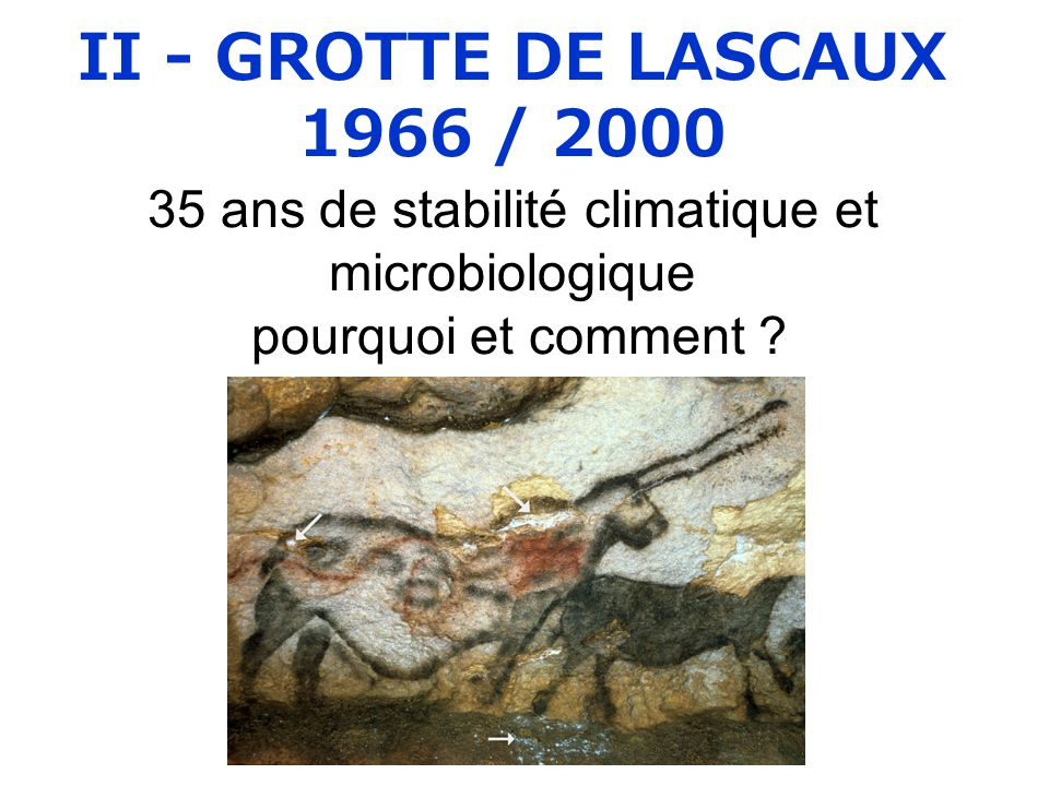 II - GROTTE DE LASCAUX 1966 / 2000 35 ans de stabilité climatique et microbiologique pourquoi et comment ?