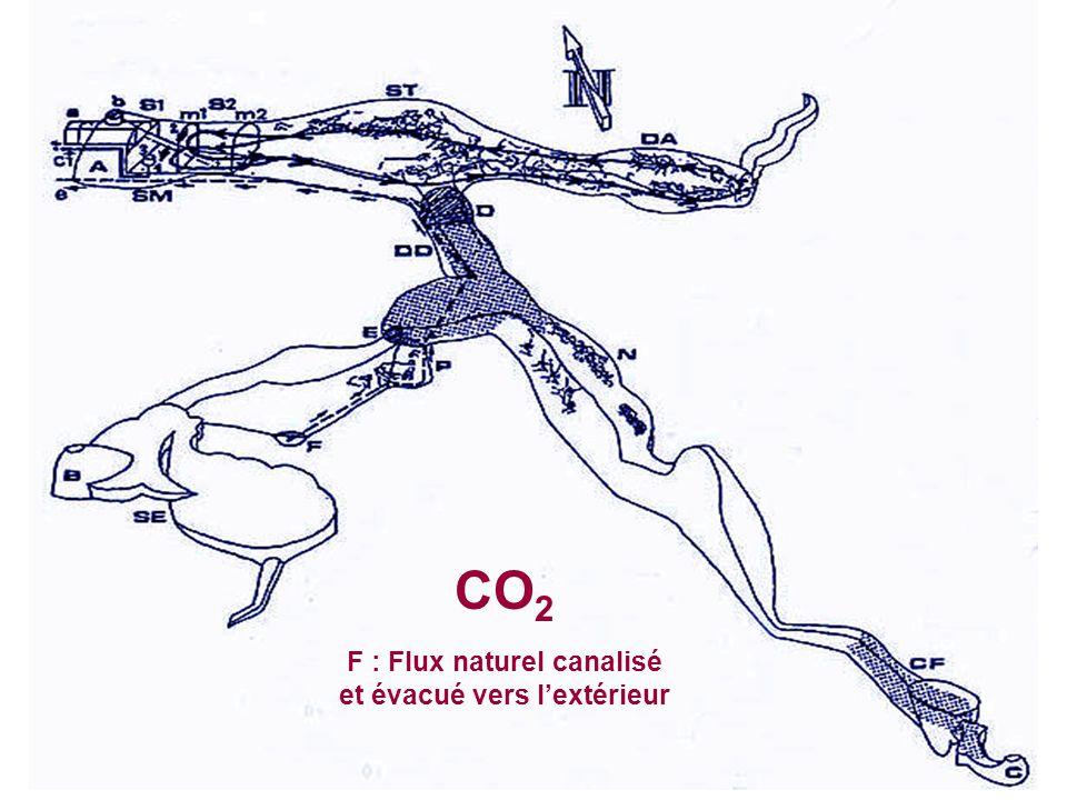 CO 2 F : Flux naturel canalisé et évacué vers lextérieur