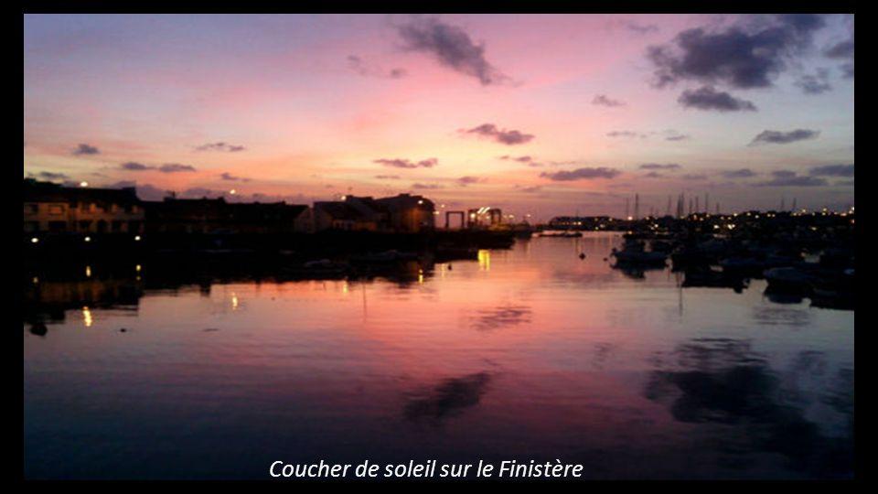 Etang à Fareins près de Villefranche sur Saône