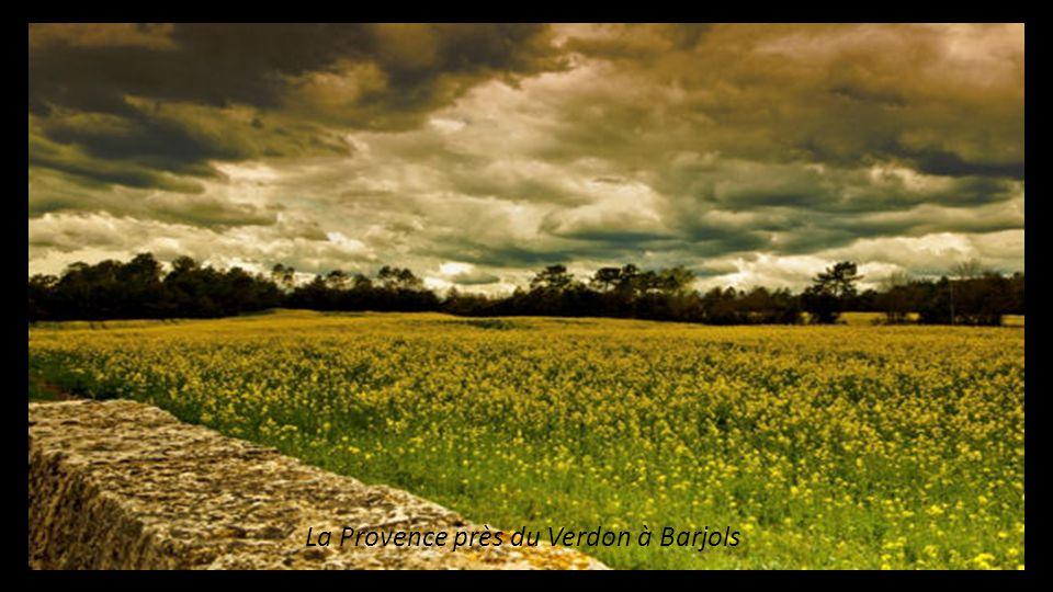 La Provence près du Verdon à Barjols