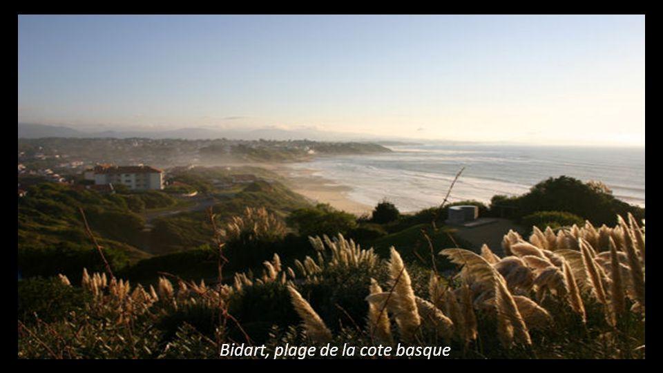 Bidart, plage de la cote basque
