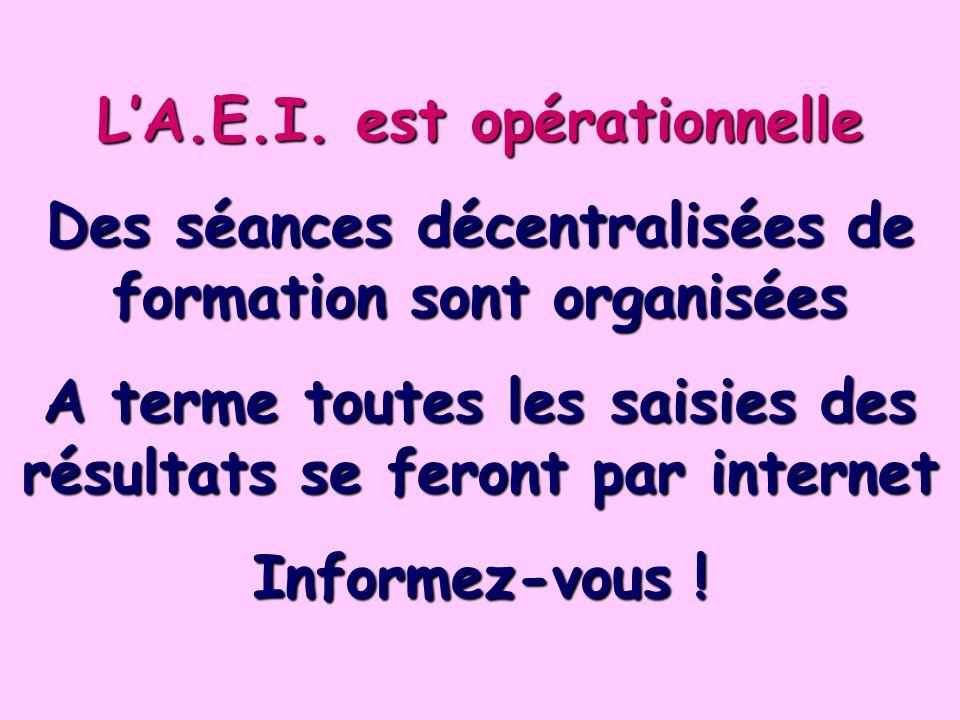 LA.E.I. est opérationnelle Des séances décentralisées de formation sont organisées A terme toutes les saisies des résultats se feront par internet Inf