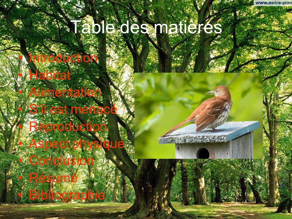 Table des matières Introduction Habitat Alimentation Sil est menacé Reproduction Aspect physique Conclusion Résumé Bibliographie