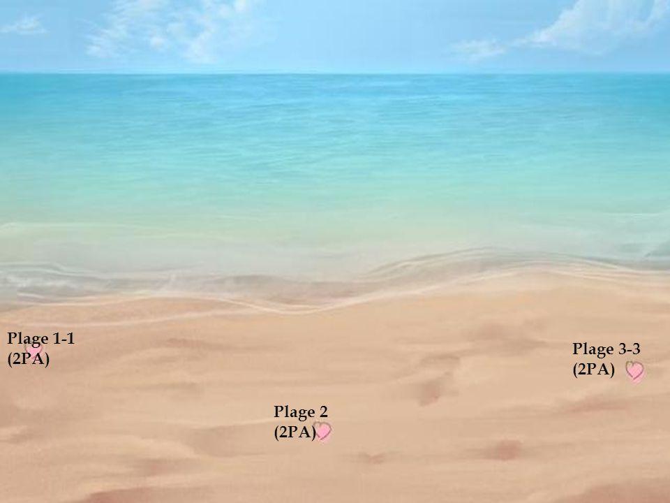 Plage 1 (2PA) Plage 2-2 (2PA) Plage 3 (2PA)