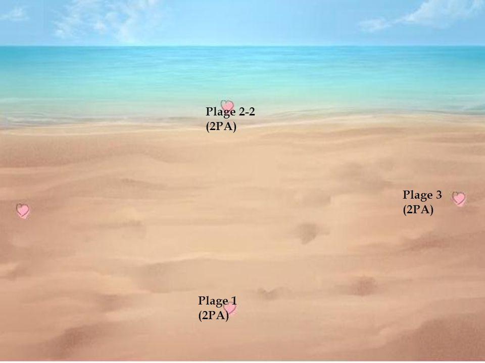 Plage 1 (2PA) Plage 2-2 (2PA)
