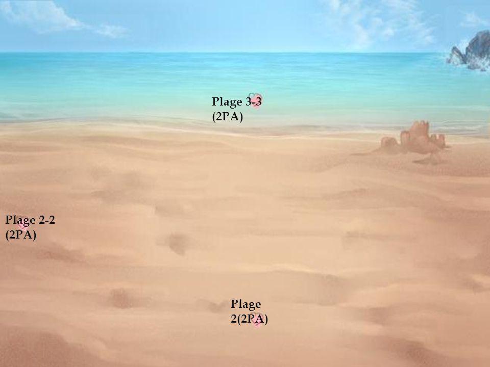 Plage 1-1 (2PA) Plage 2 (2PA) Plage 3-3 (2PA)