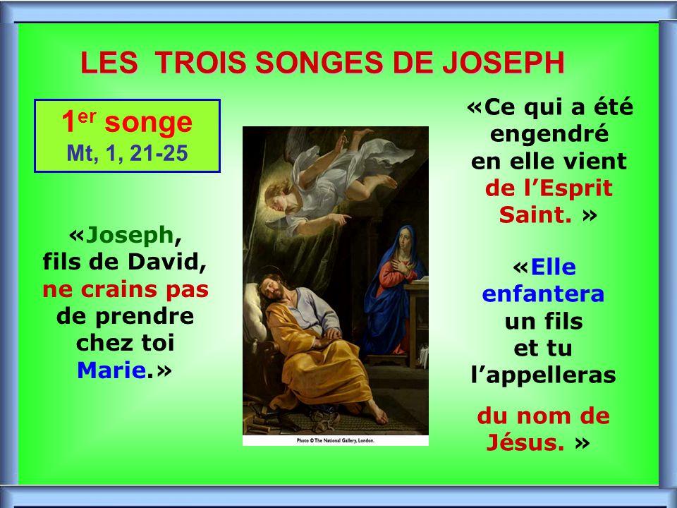 .. JOSEPH, DESCENDANT DE DAVID Il est : De la Famille de David (Luc 1, 27) De la Ville de David (Luc 2, 4) De la généalogie de David (Luc 3, 31)
